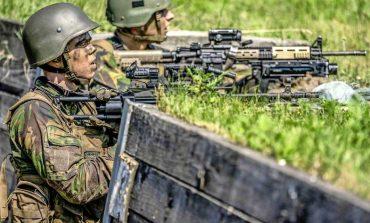 Holandia przygotowywała operację wojskową w Donbasie