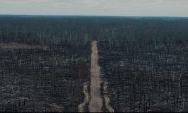 """""""Obraz jak z przerażającej apokalipsy"""" – następstwa pożarów w okolicach Czarnobyla w kamerze drona (WIDEO)"""