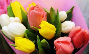 UIPN uważa, że 8 marca nie powinien być na Ukrainie dniem wolnym od pracy